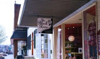 Black Rose Featured