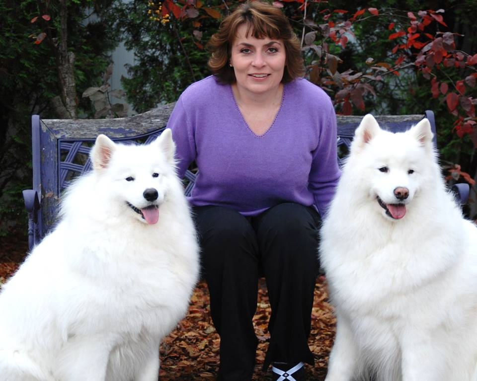 Head of the Class Dog Training, LLC