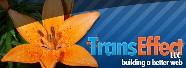Transeffect, LLC